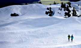 Hardlopen in de sneeuw