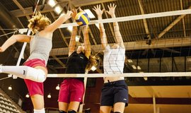 Volleyball_925x367_normal